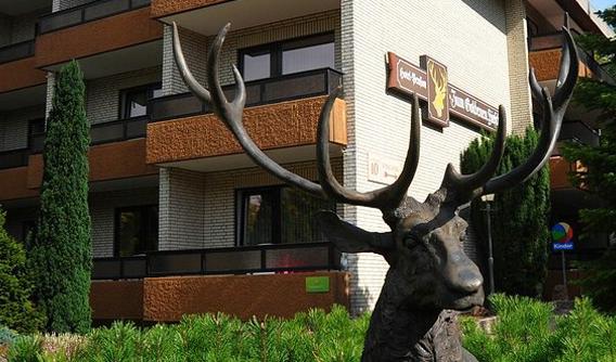 Kur- und Gesundheitshotel Zum Goldenen Hirsch